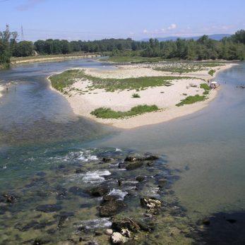 Confluence rivière d'Ain et Rhône