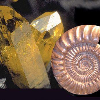 Salon MineralExpo