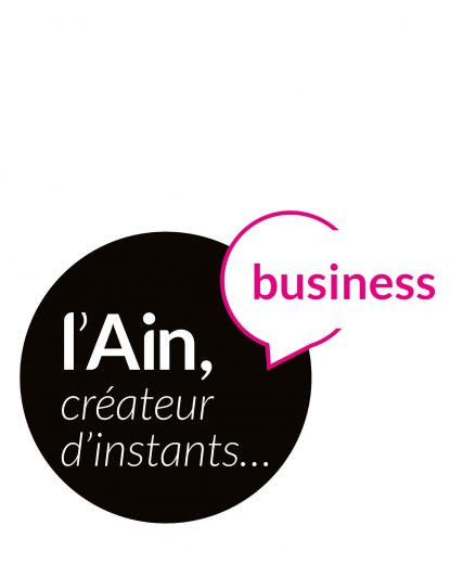 LOGO-AINT-TOURSIME-BUSINESS-ROSE-site